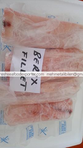 frozen orange roughy fillets