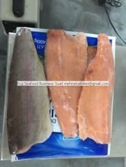 Frozen Salmon Trout fillet