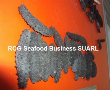 Dried  Sea Cucumber*Barbed Sea Cucumber*Spiky Sea Cucumber