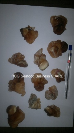 Dried Top Shell Meat (Murex Duplex)