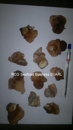 Dried Top Shell Meat (Murex Duplex)