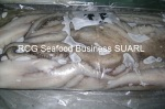frozen octopus vulgaris