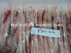 sea cat fish fillet