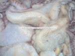 Top Quality Octopus Vulgaris :Origin:Senegal/Mauritania