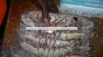giant size sea tiger prawn