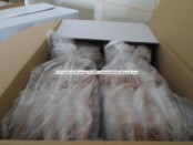 Frozen hoso white prawn from Turkey