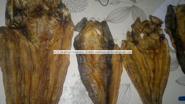 Dried Catfish wholeseller