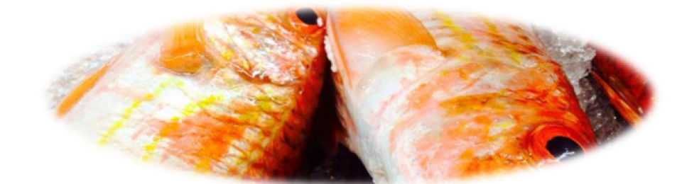Fresh -Frozen Seafoods And Fish Products