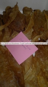 Corvina fish air bladder