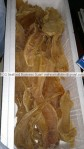 dried corvina air bladders