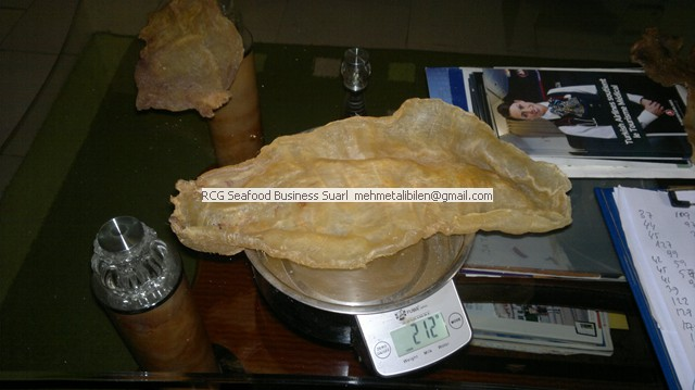 +200 gr dried corvina fish maws (air bladders)