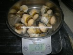 Boiled Top Shell Meat