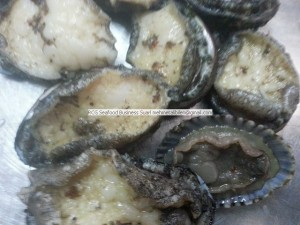 Fresh - Frozen - Dried Abalone Exporter (1)