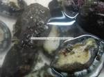 Live-Frozen Abalone
