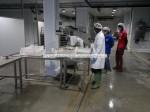 senegal ,seafood processing plant
