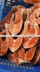 frozen salmon trout wholesale