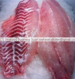 fresh grouper fillets