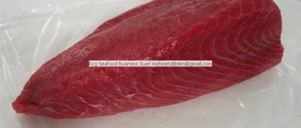yf tuna loins