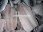 sardine pilchardus fillet