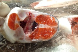Atlantic Salmon supply