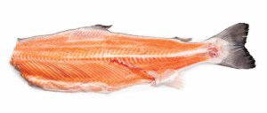 atlantic salmon backbones