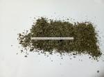 Dried Moringa Oleifera