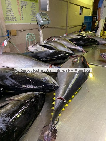 Sashumi Grade Yellowfin Tuna